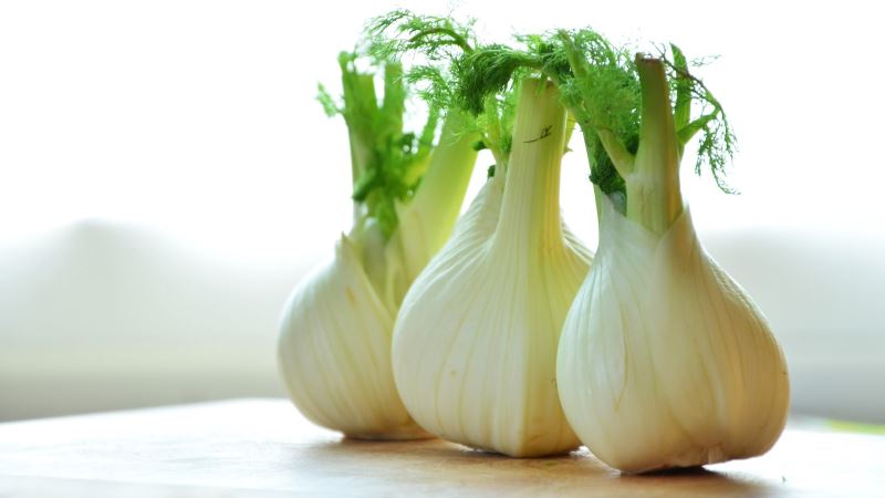 Fennel Substitute